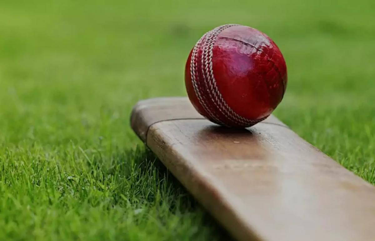 Best Strategies to bet in cricket